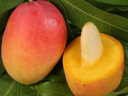 Cogshall Mango's