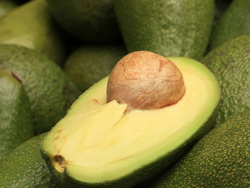 Day Avocado