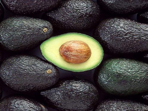 Florida Haas Avocado