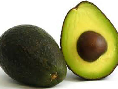 Super Hass Avocado