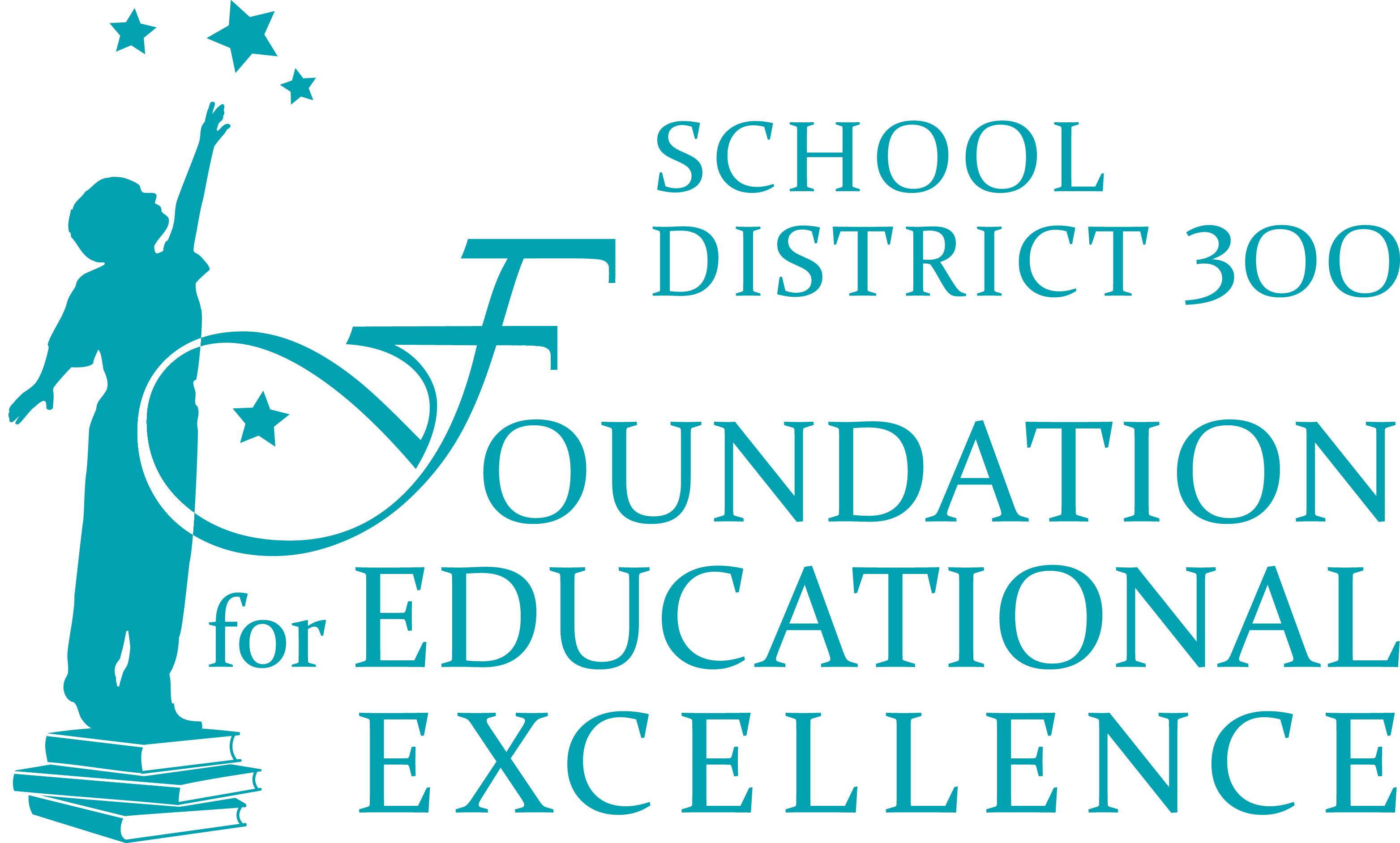 D300 Foundation for Educational Excellence