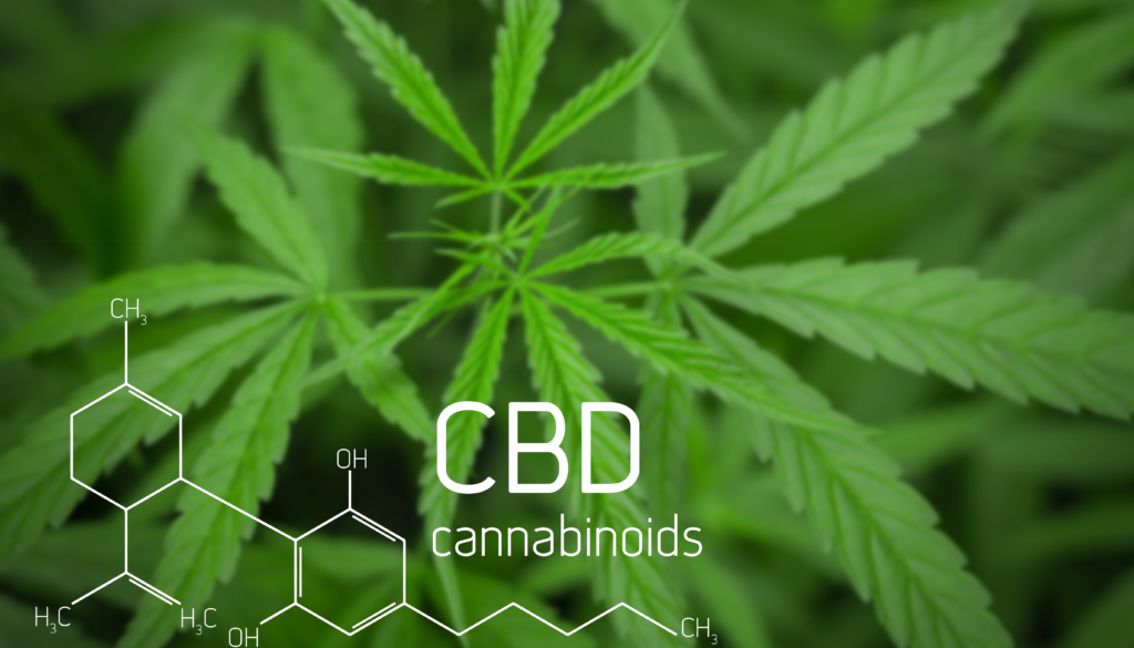 cbd cannabinoids