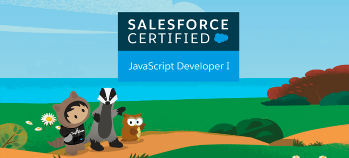 JavaScript Developer I Certification