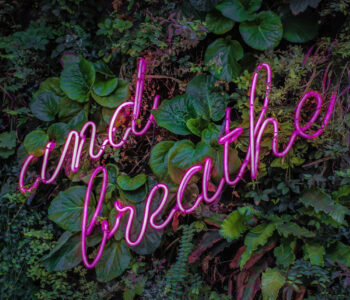 reduce worry and anxiety and breathe neon sign with plants in background