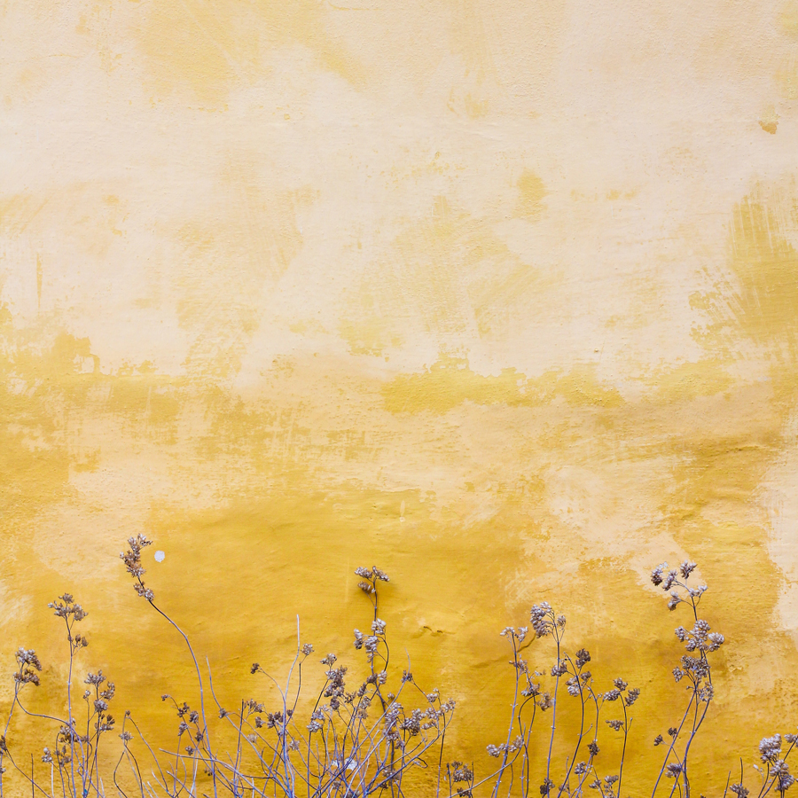 yellow wall with flowers