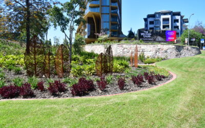 Completed Project: Kangaroo Point