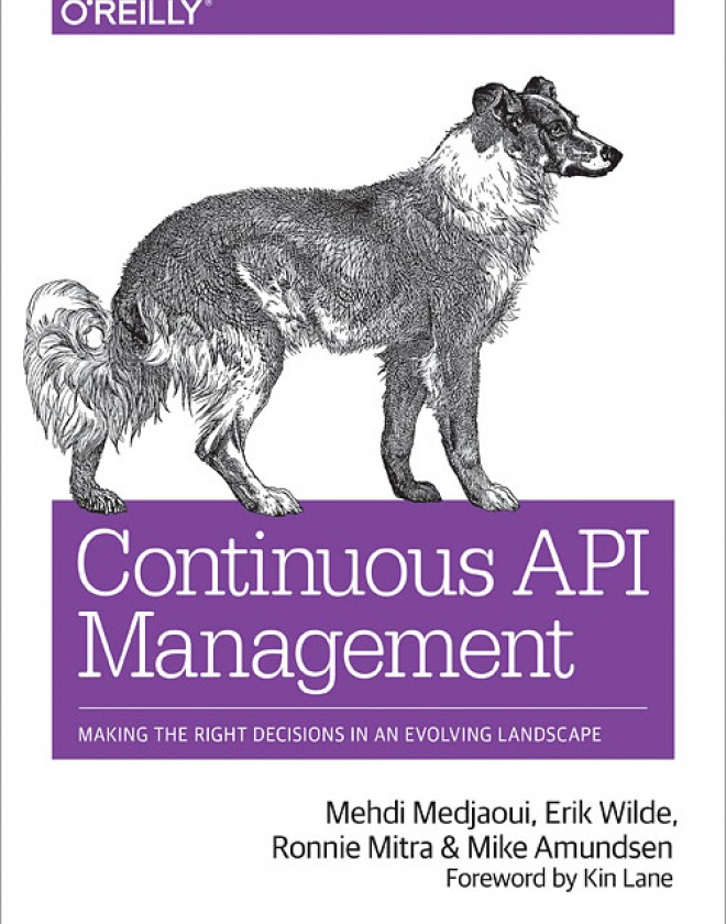 Continuous API Management