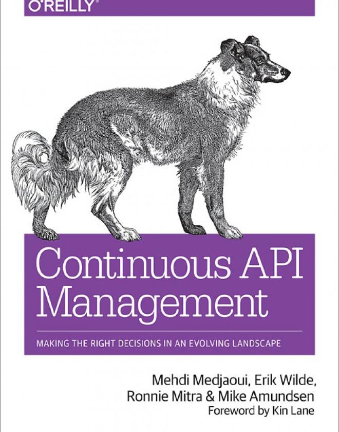 Continuous API Management
