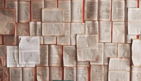 How API Languages Evolve
