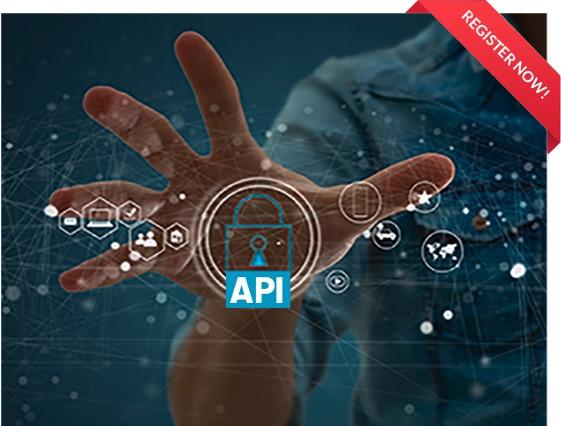 API Security Architect