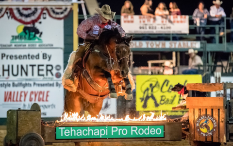 2017-Rodeo1