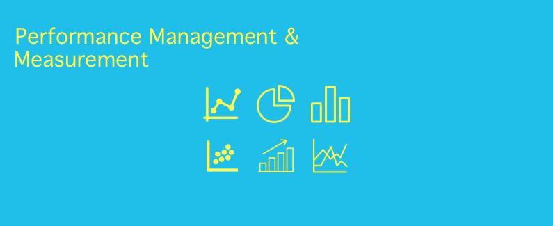 מדידה וניהול ביצועים