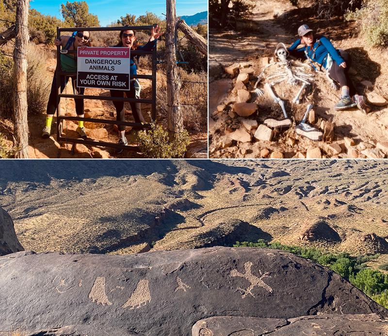 Hiking Signs, Dangerous Animals