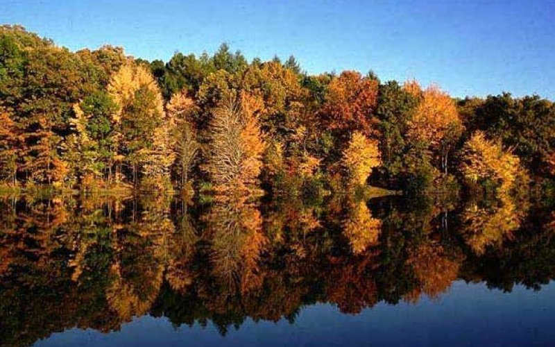 Fall Color Cruise At Norris Dam State Park