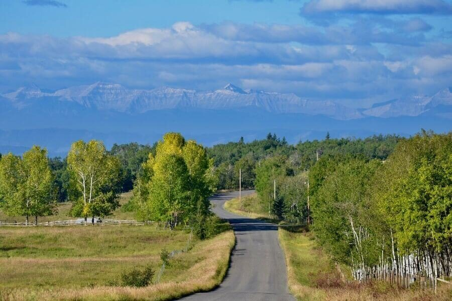 a road in alberta's foothills heads toward the rocky mountains, through forest that is changing to autumn colours