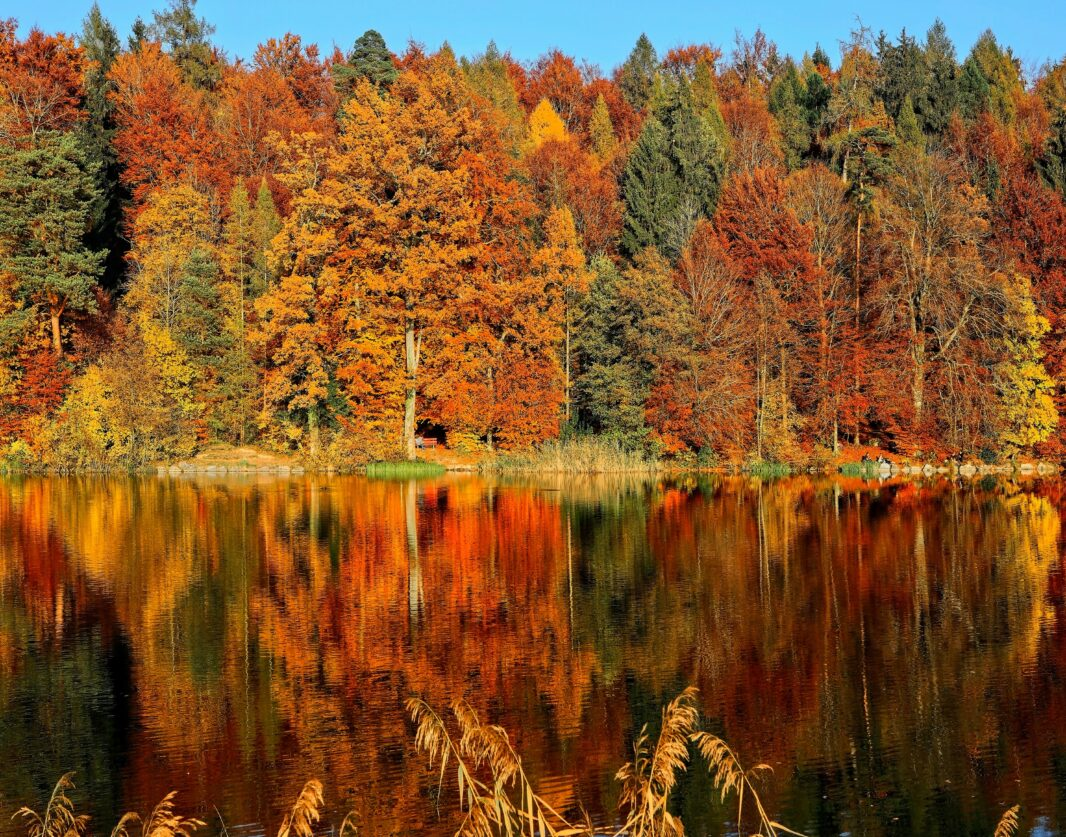 How to Ease the Transition to Fall
