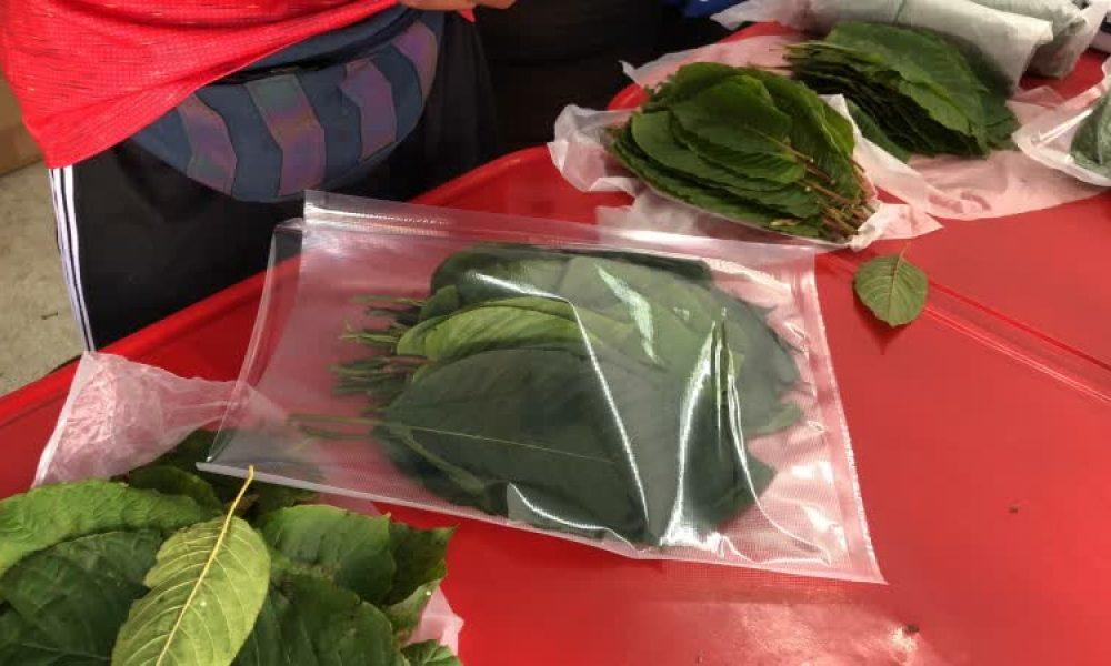 Kratom vendors make profits during COVID-19 outbreak