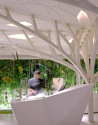 Indirect Biophilic Design/Biomimicry