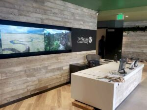 Reclaimed wood paneling used as a biophilic interior design element in an office's reception area.