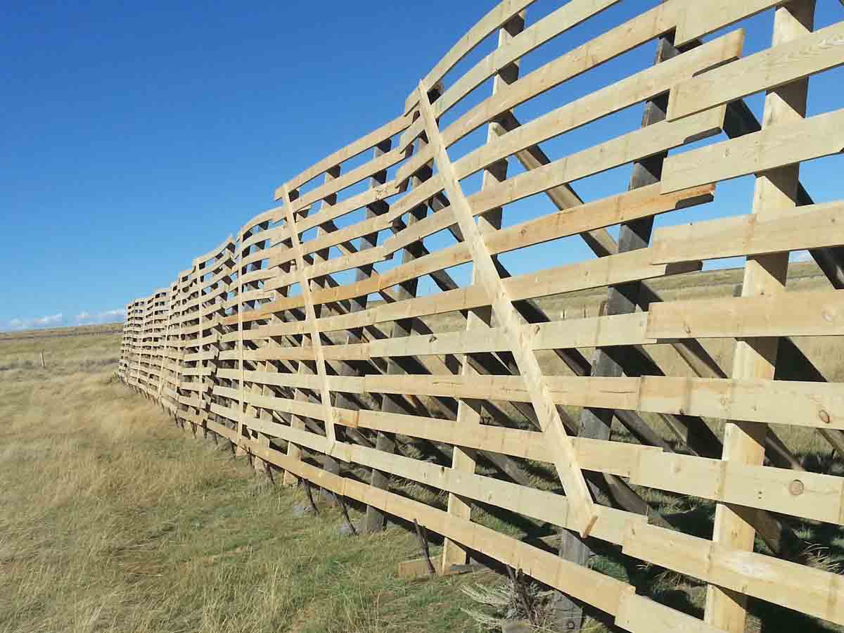 A new 12 foot tall snow fence in Wyoming, once the wood has weathered it will be recycled and milled into reclaimed wood planks by Centennial Woods.