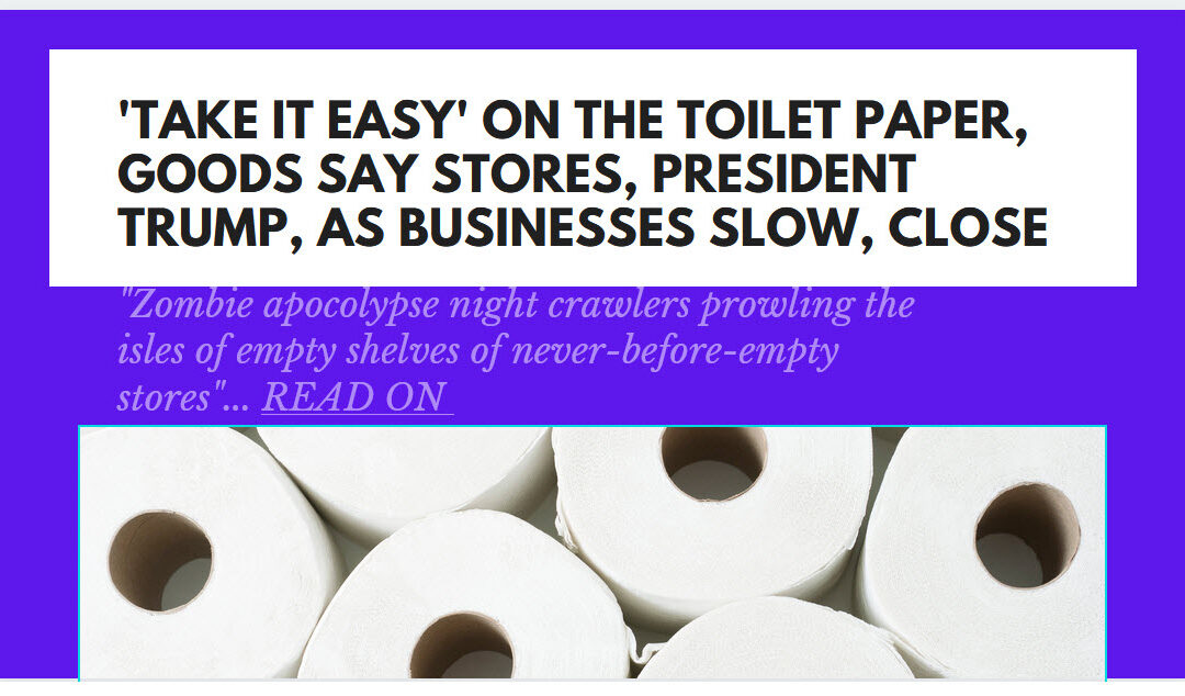 Toilet Paper Alternative, Bulk Toiletpaper,Cheap Toilet Paper brands-Beat CoronaVirus Shortage, Better Than ToiletPaper