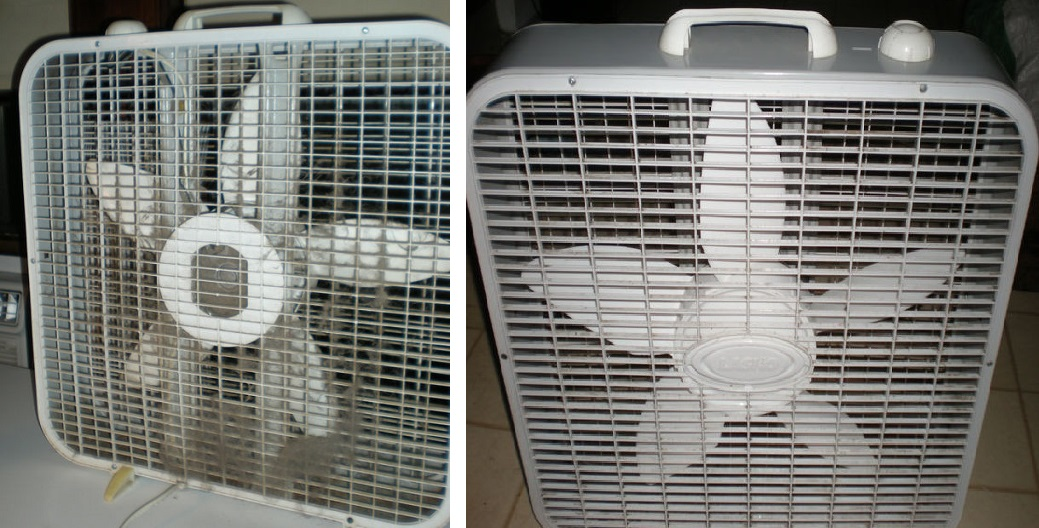 My Biggest Fan and How Steam Cleaned It