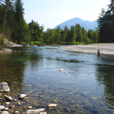Stillaguamish River Steelheading