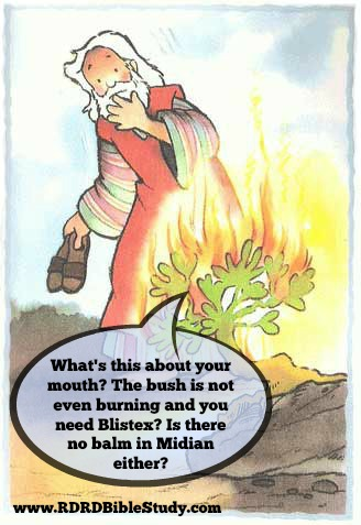 RDRD Bible Study moses and burning bush