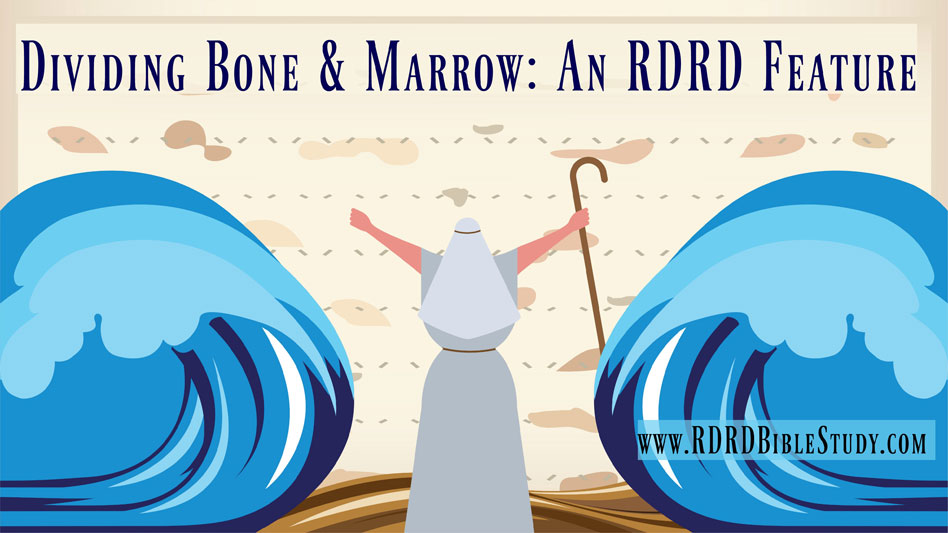 RDRD Bible Study Dividing Bone and Marrow