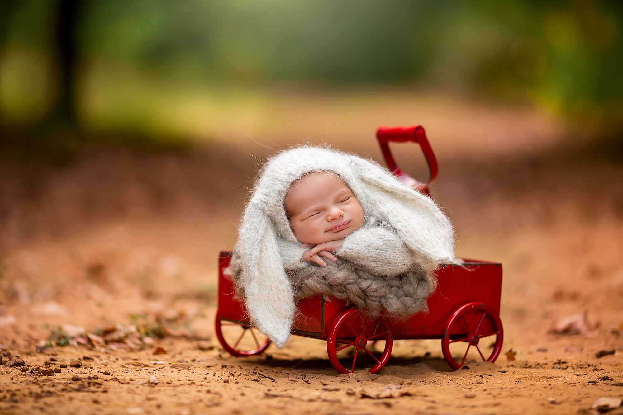 Highland Village Newborn Photographer