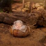 Argyle Newborn Photographer