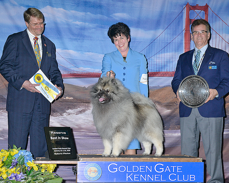 Reserve Best in Show Sun