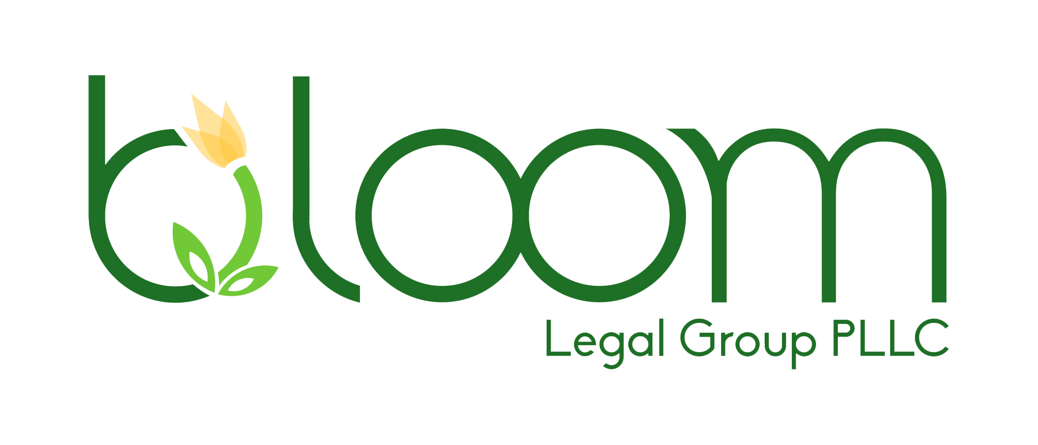 Bloom Legal Group PLLC