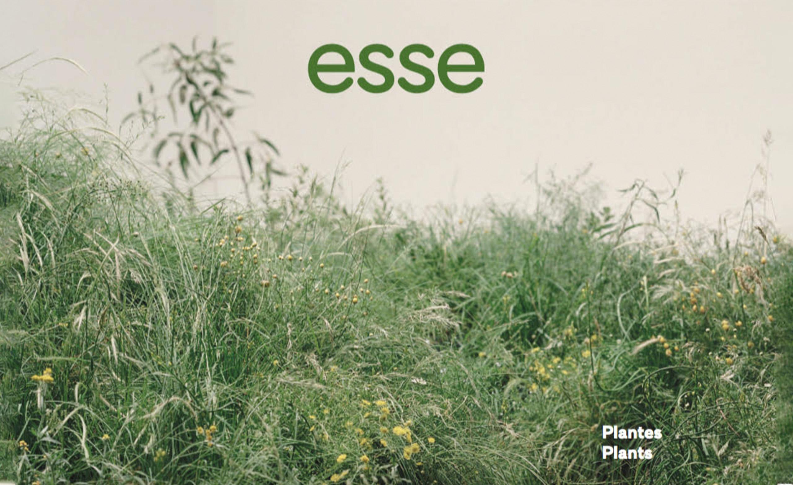 Esse_Cover_Luce_Meunier