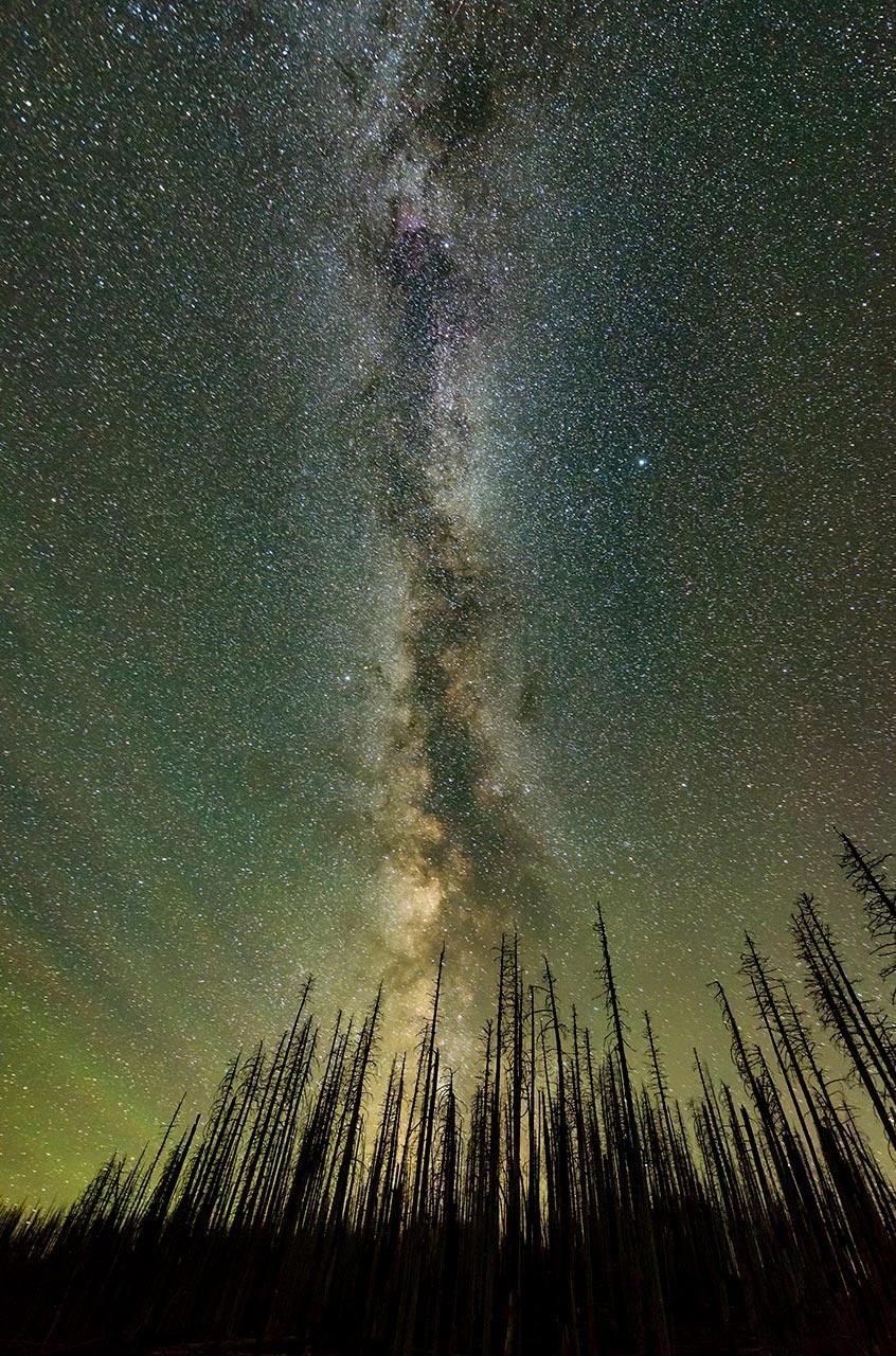 milky-way-night-sky-photography-burned-trees-oregon_v