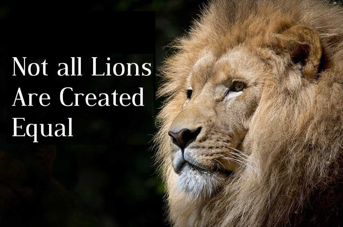 Not all Lions Are Created Equal