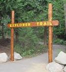 Forestexplorertrail