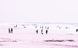 Bleached Beach IV