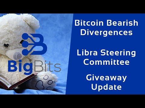 Bitcoin Bearish Divergences – Libra Steering Committee – Giveaway Update – 1-17-2020
