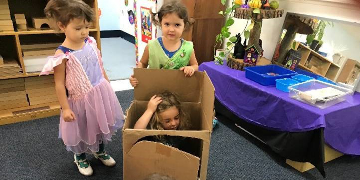 Renewable Resource for Play - The Cardboard Box