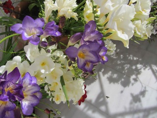 Freesias on the balcony console us: too pretty to pick.