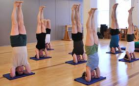 An orderly Iyengar-style Yoga class in action.