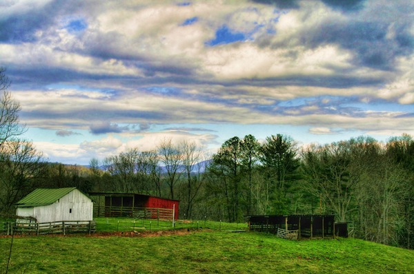 """A family farm in the author's beloved """"Great Blue Ridge."""""""