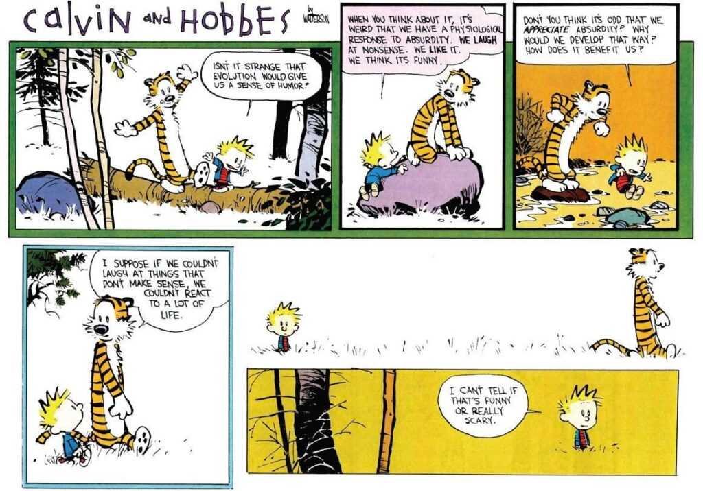 Calvin and Hobbes on absurdity.
