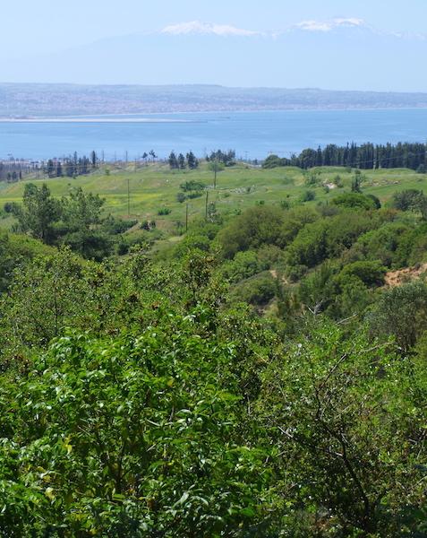 Ravine in Panorama.
