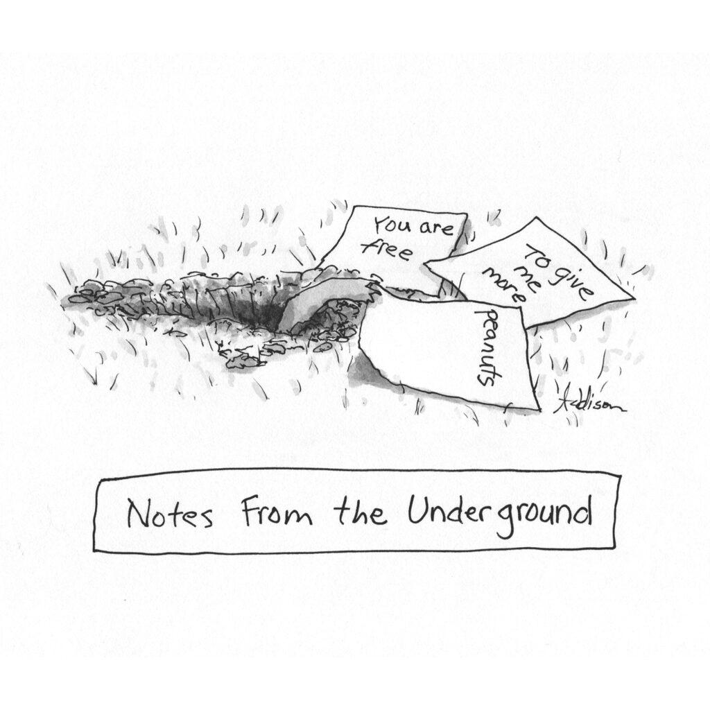 Addison-underground
