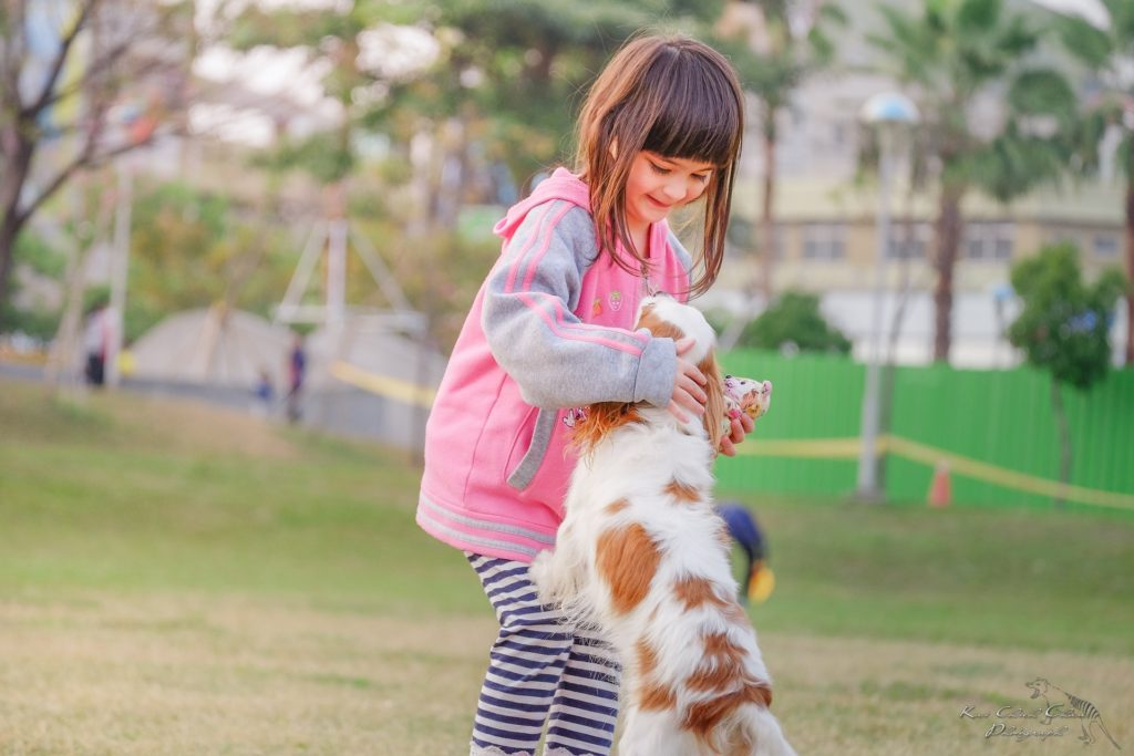Moving with Pets & Kids