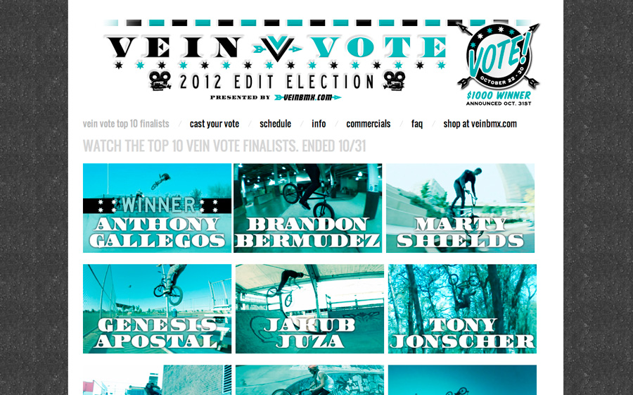 veinvote2012website