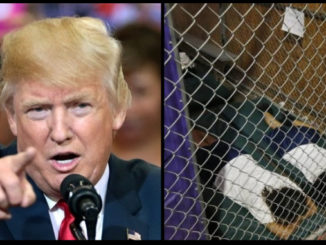 Donald Trump juxtaposed with kids in cages at the border
