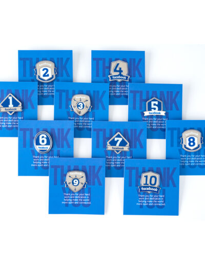 Facebook Recognition pins